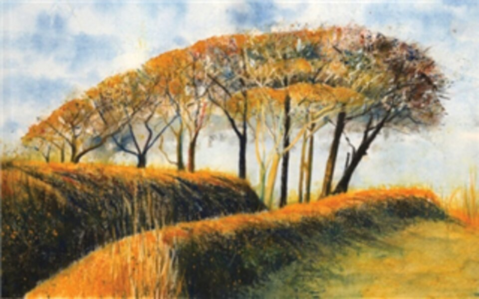 In store demonstration: Cornwall Arts, Truro